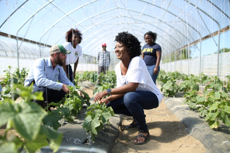 students smiling on strawberry farm