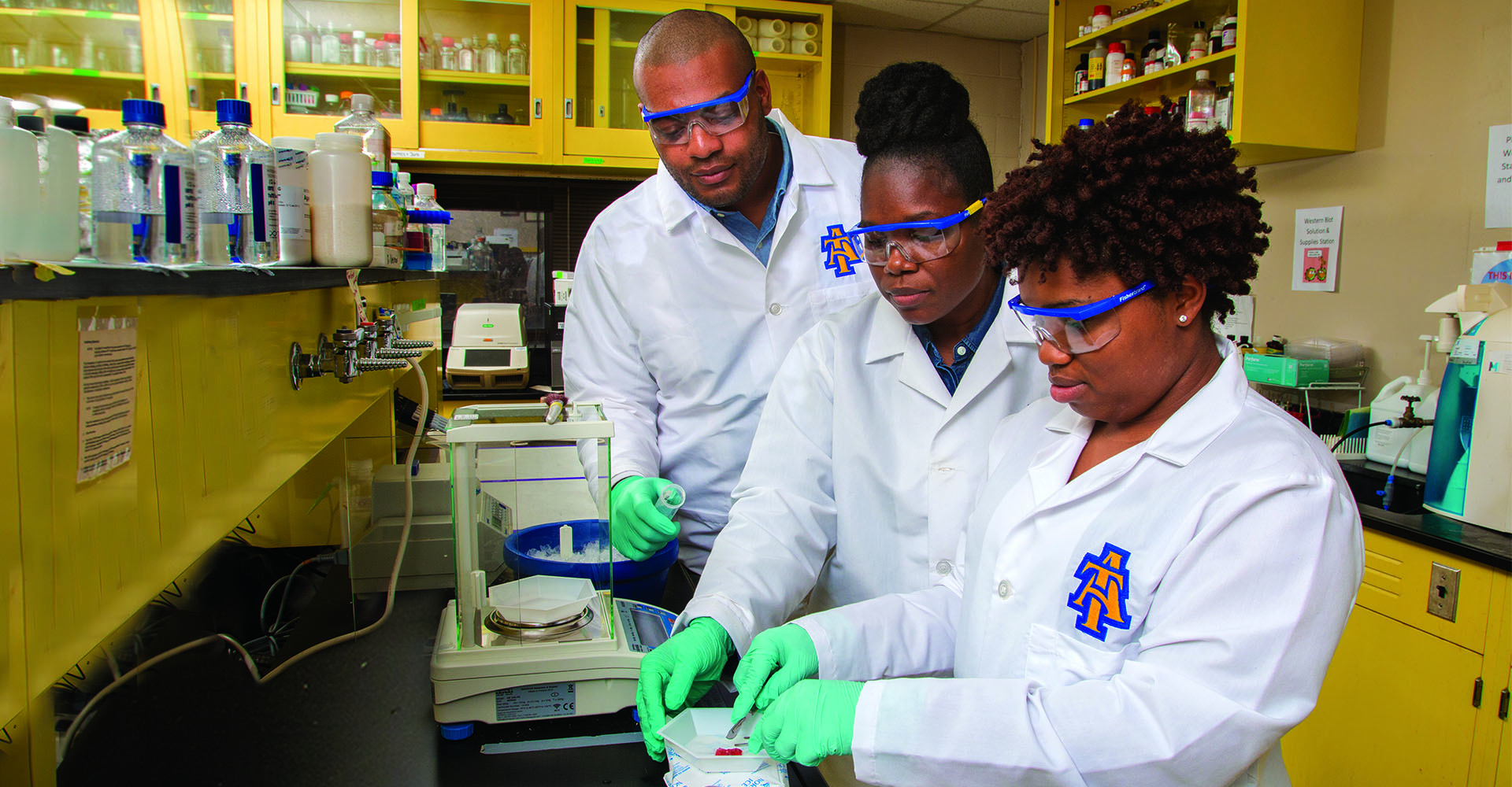 Student scientists working in laboratory
